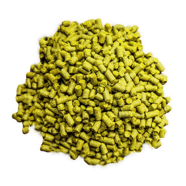 Elements of Beer: Recycling Hops in the Brewhouse