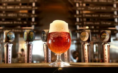 How Beer Brewers are Embracing Sustainability