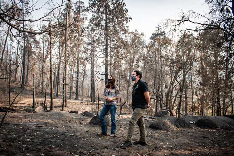 "Tioga-Sequoia Brewing Company Targets ""1% for the Planet"" Donations to Creek Fire Recovery Efforts"