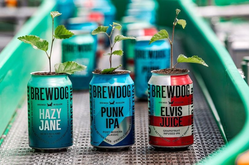 BrewDog Launches Buy One Get One Tree Initiative